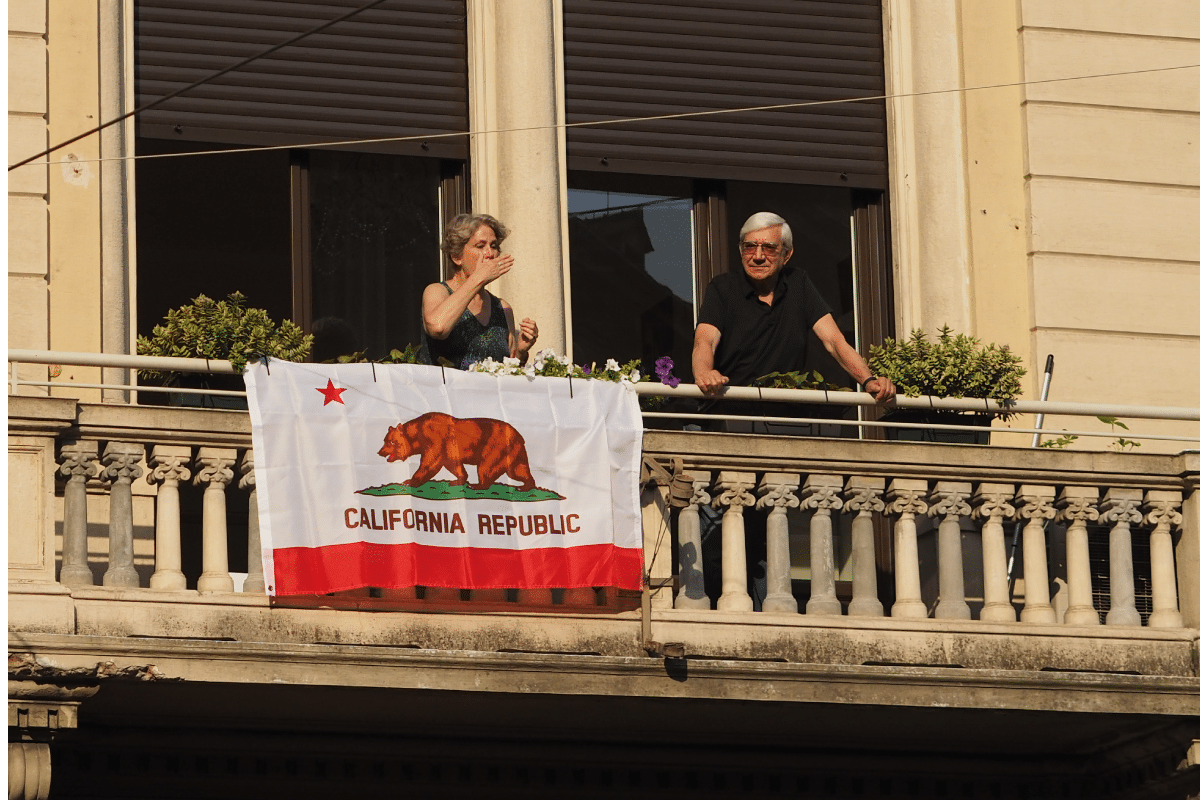 Orsi nelle bandiere, bear in piazza
